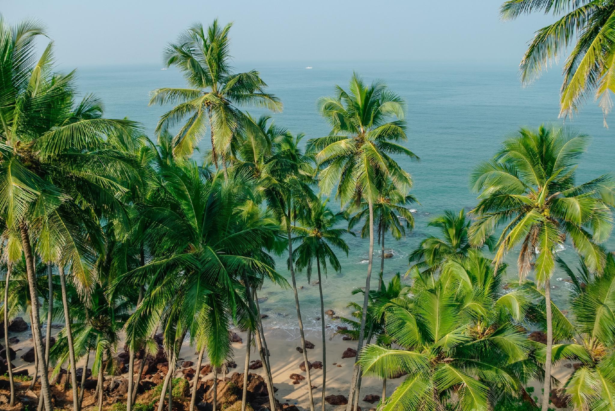 SPOT ON 37514 Santana Guest House, South Goa