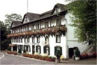 Logis Hôtel du Moulin