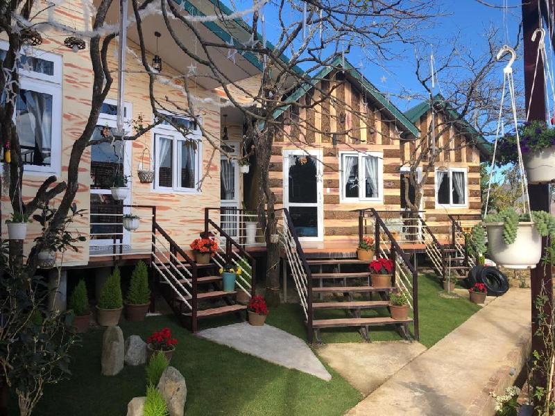 大叻松樹之家