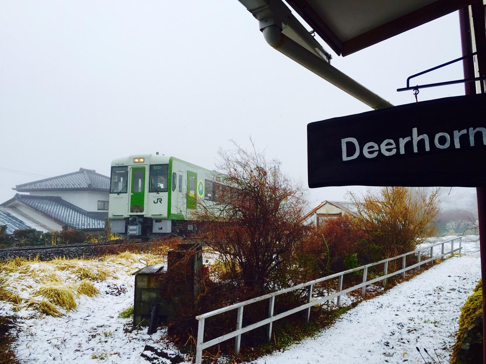 Guest House Deerhorn, Hokuto