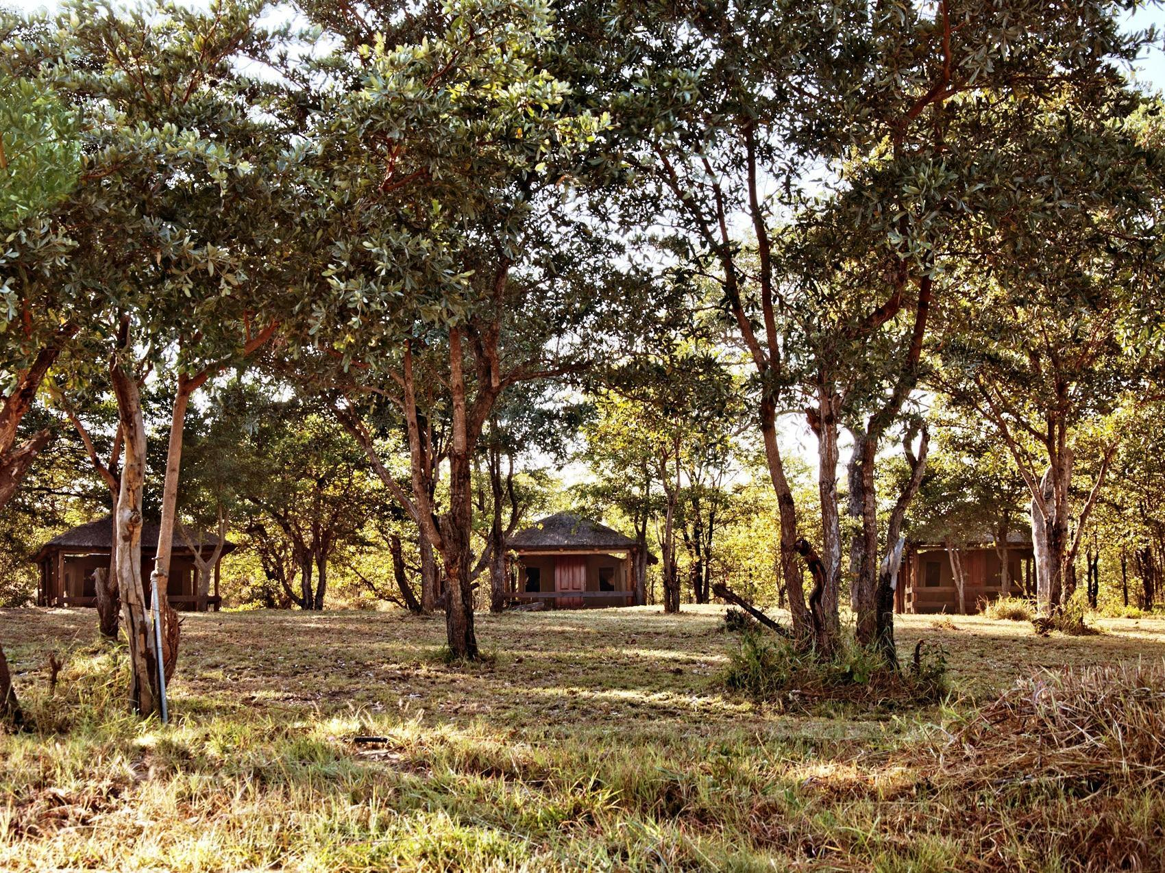 Shindzela Tented Safari Camp and Walking Safaris Accommodation, Ehlanzeni