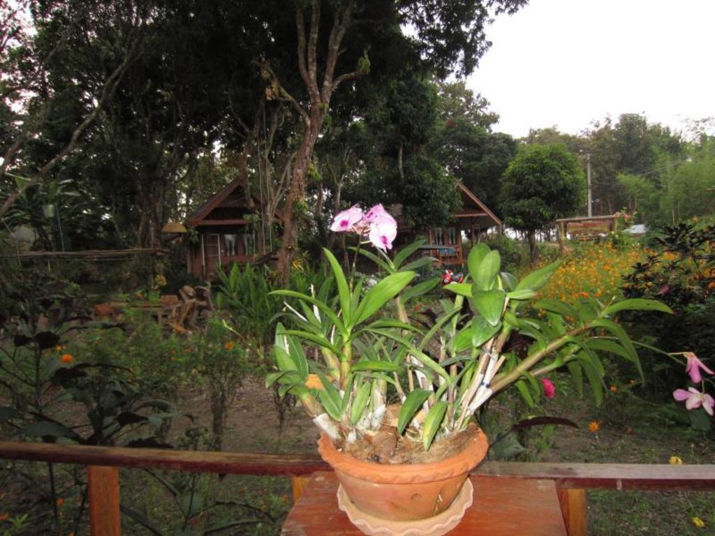 ライチ ガーデン バンガロー20