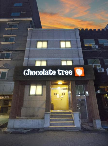 巧克力樹青年旅館