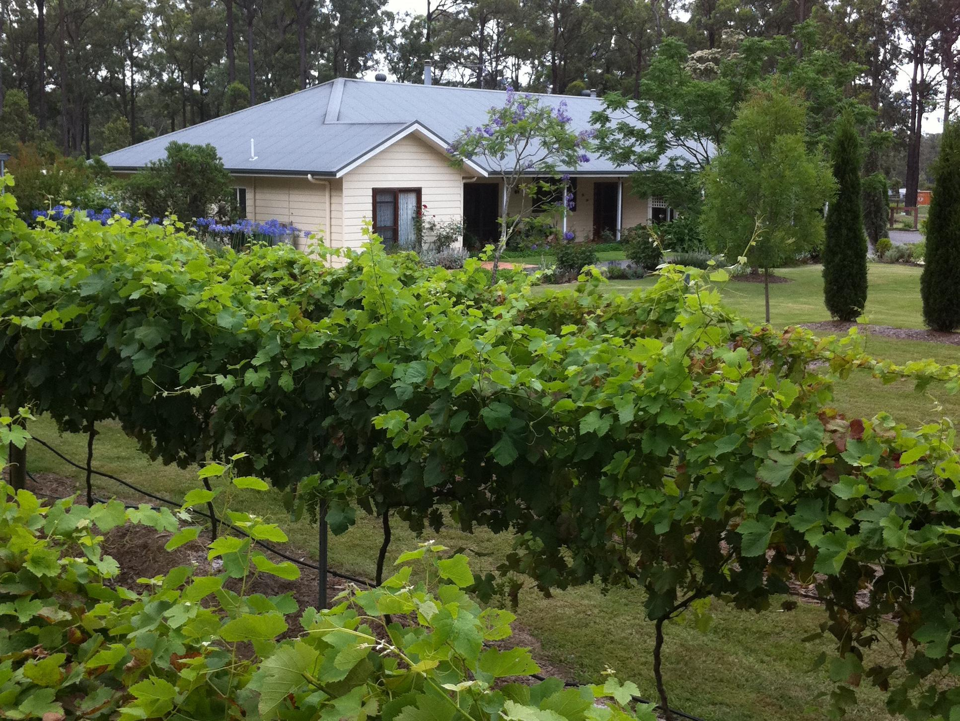 Rosedale Bed and Breakfast, Cessnock