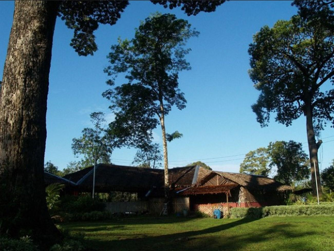 Borneo Proboscis River Lodge, Beaufort