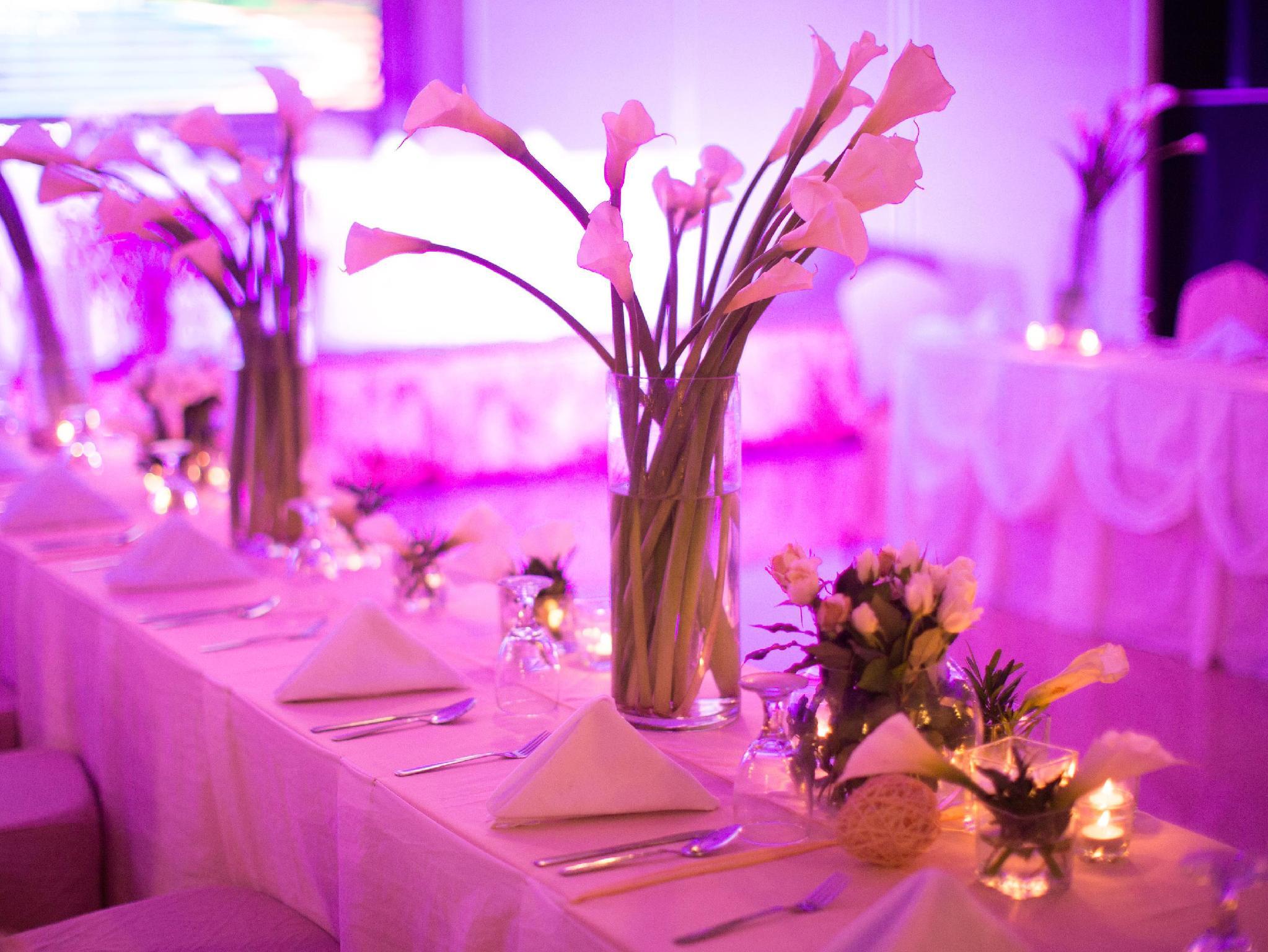 Aziza Paradise Hotel - Ballroom - photo added 1 year ago