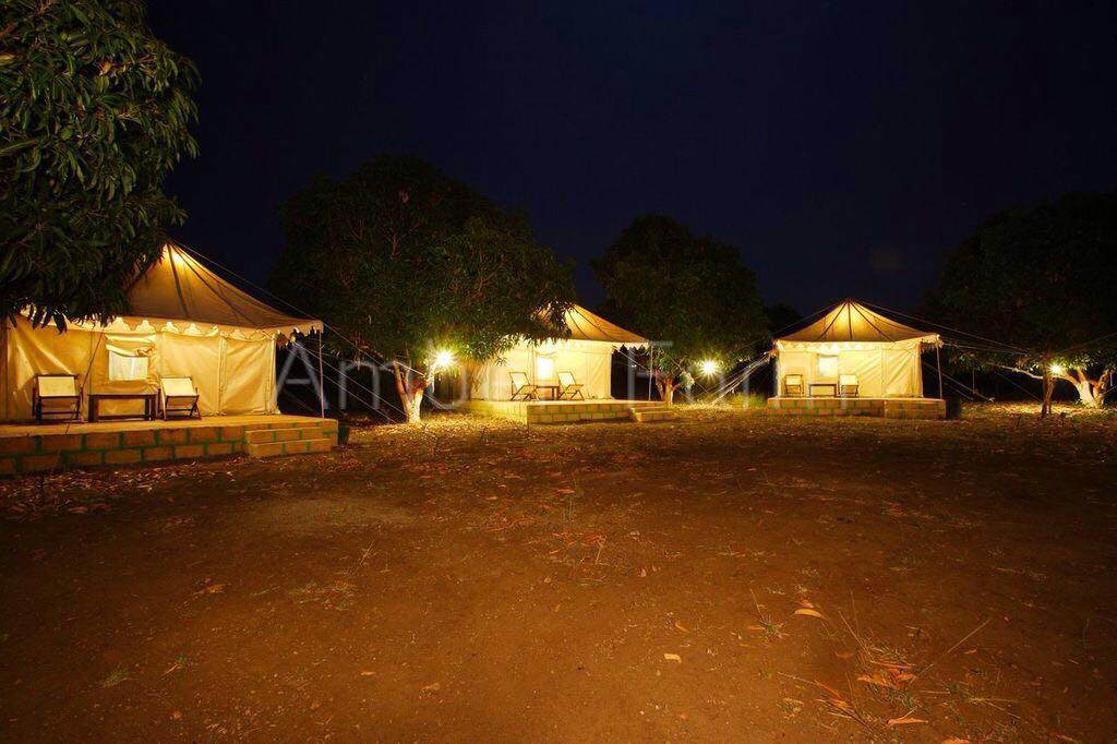 Amber Farm, Gir Somnath