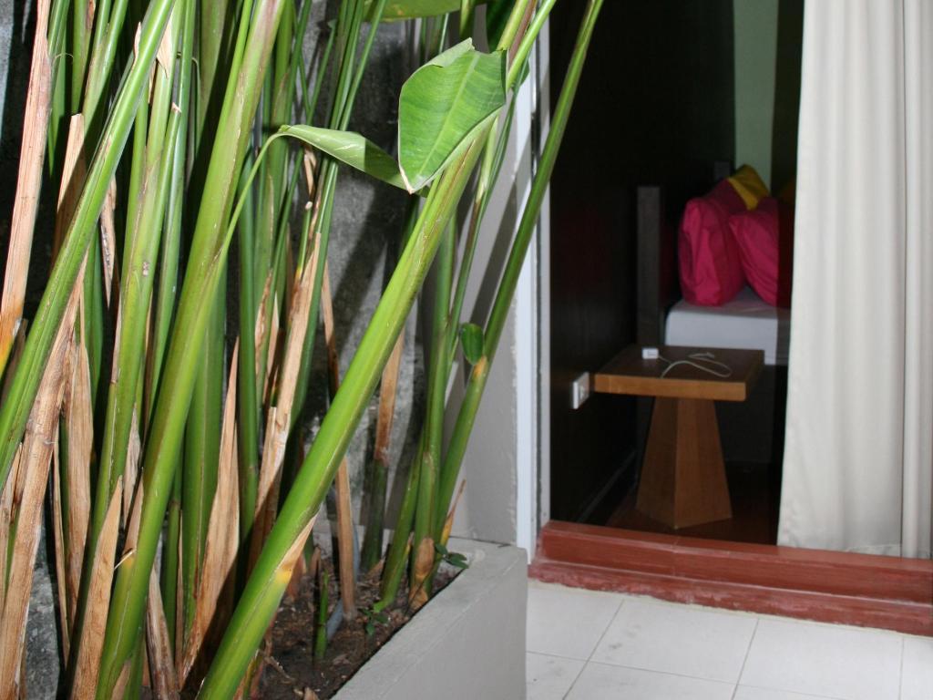 サバイ バンコク ホテル2
