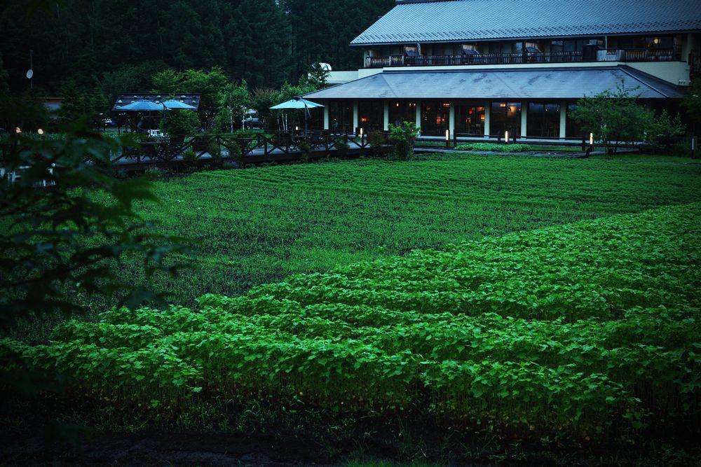 Tsutaya Tokinoyado Kazari, Kiso