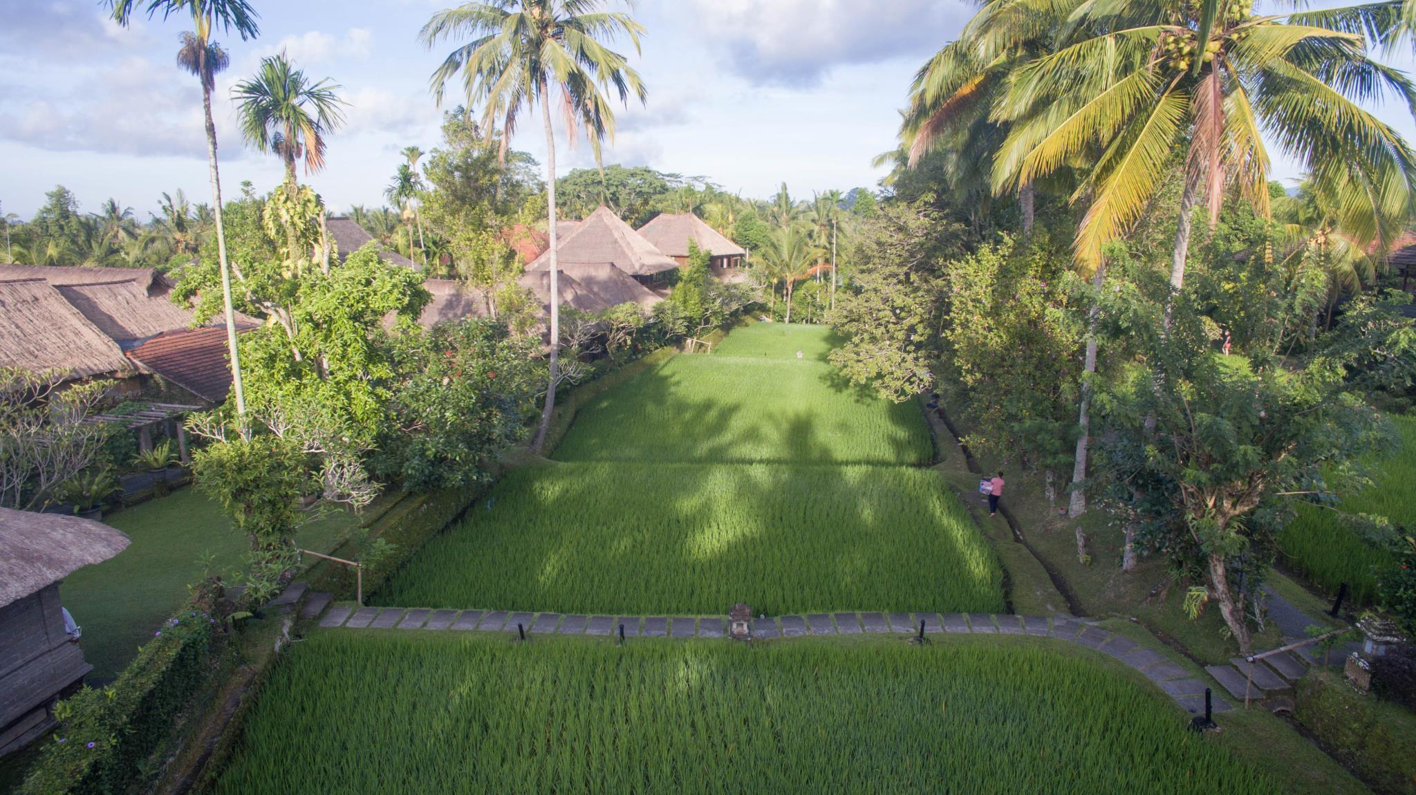 Ananda Ubud Resort, Gianyar