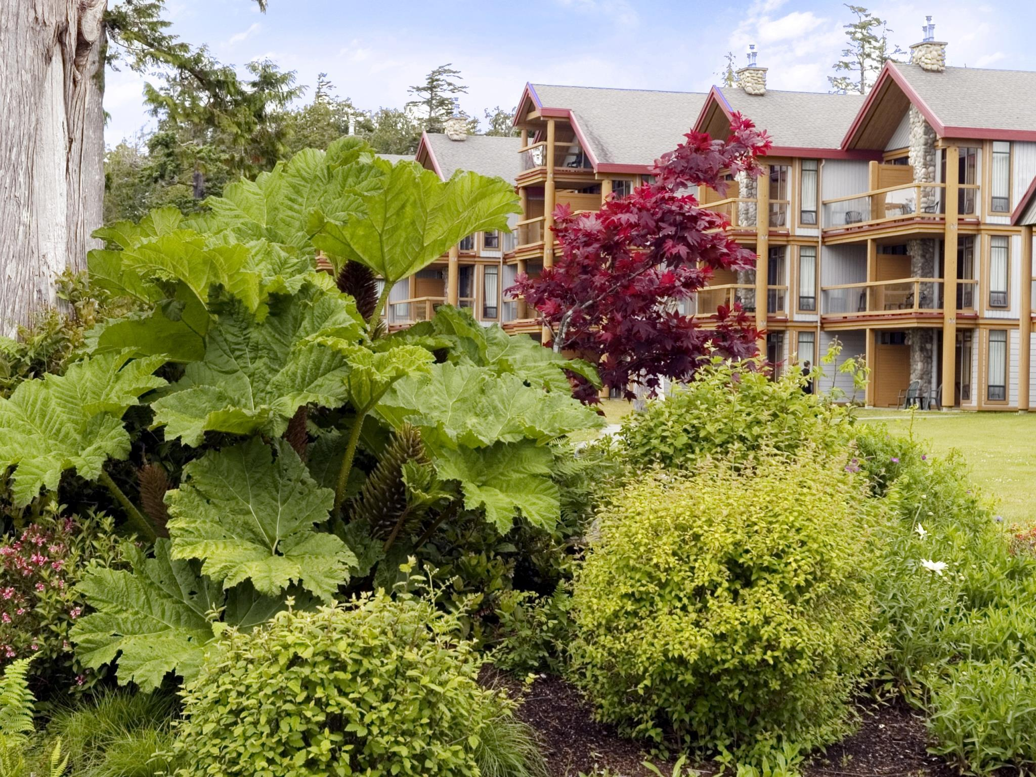 Best Western Tin Wis Resort, Alberni-Clayoquot