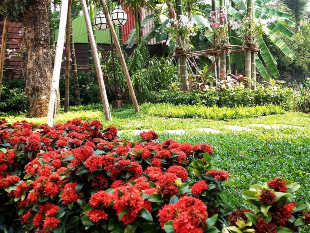 Viang Thapae Resort15