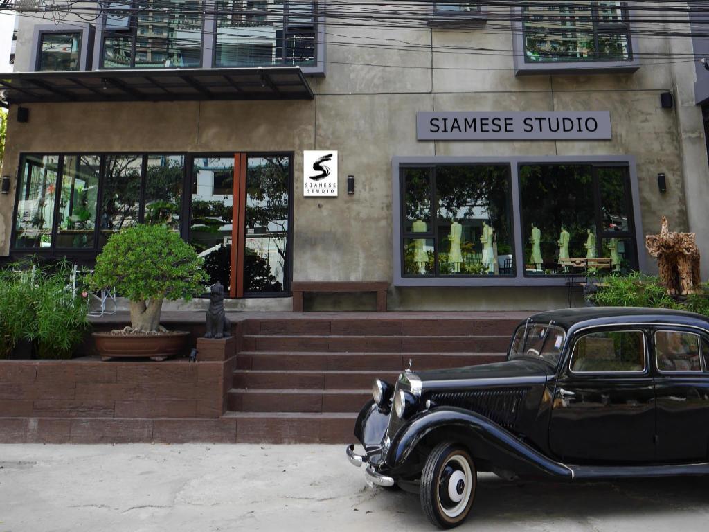 Siamese Studio1