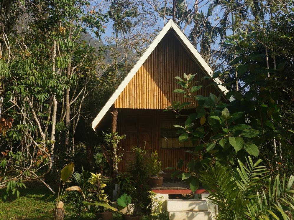 Khao Sok Jungle Resort, Phanom