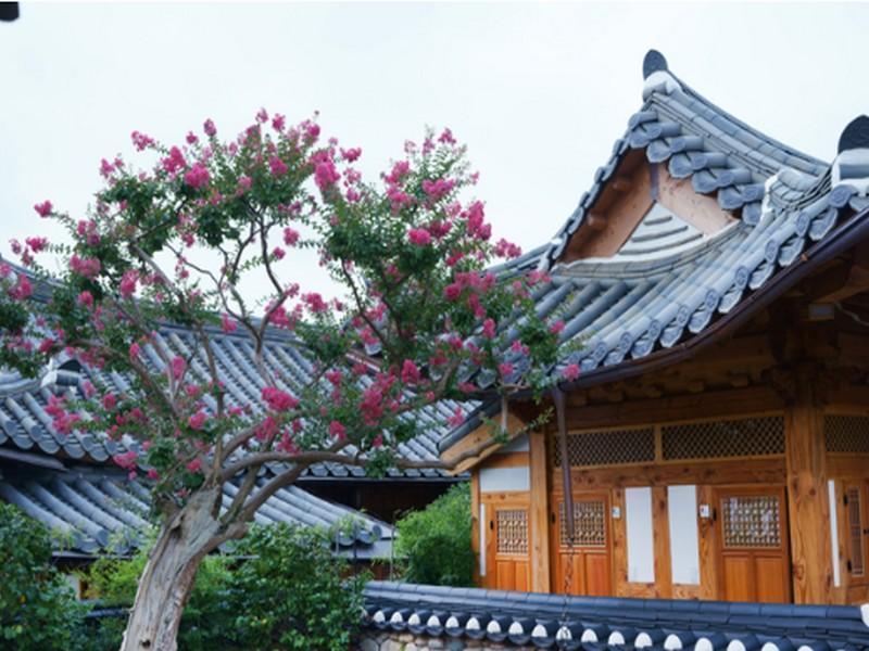 Dajeong民宿