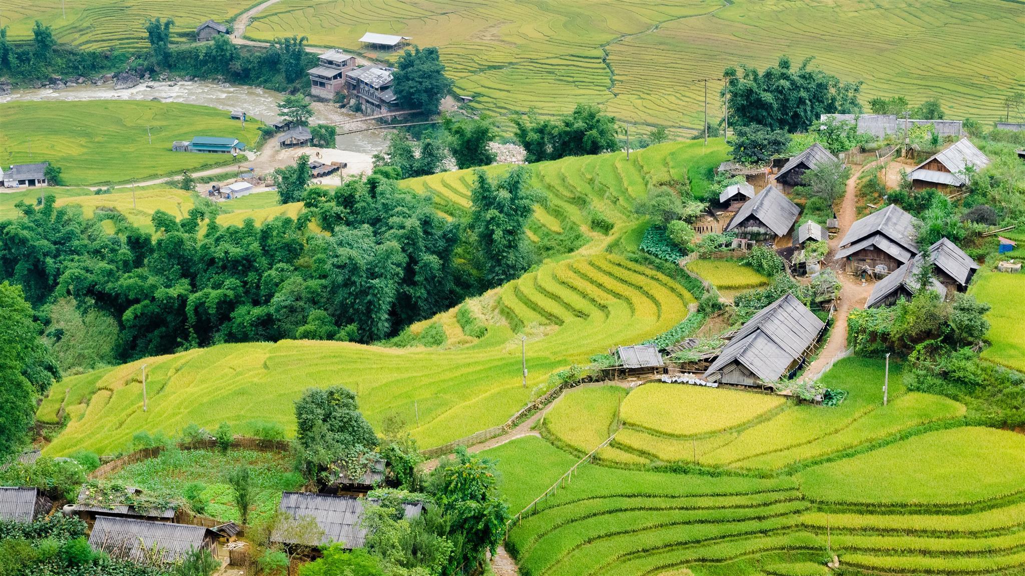 Tìm Căn hộ ở Sapa, Việt Nam