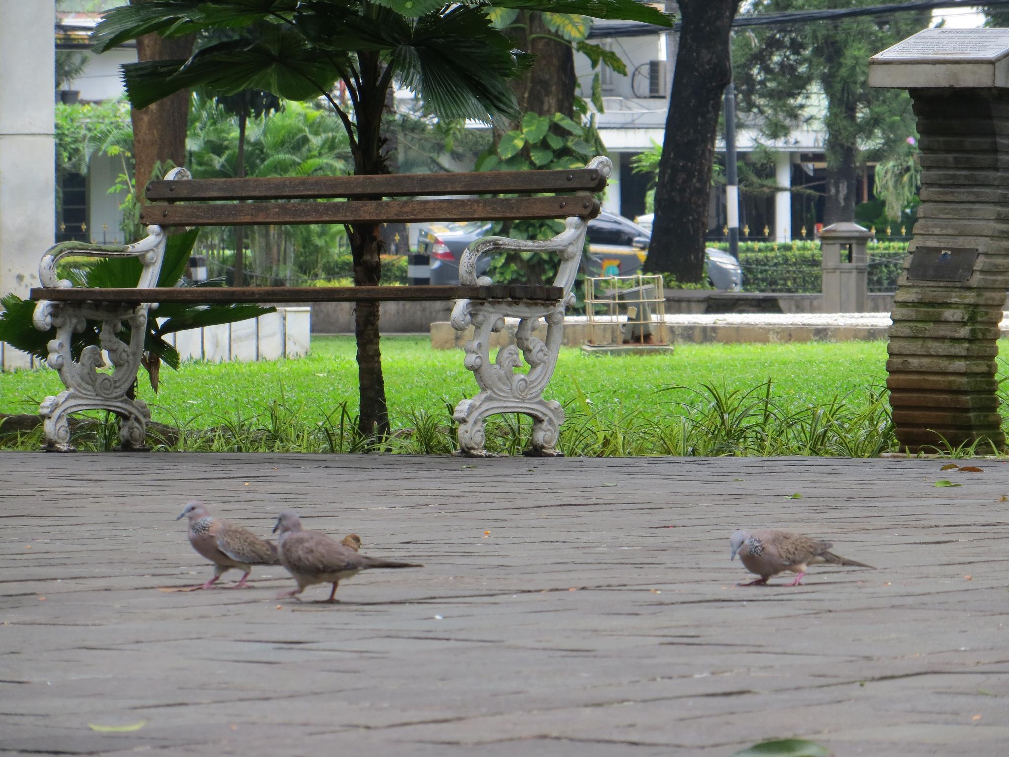 Rafa property, Jakarta Selatan