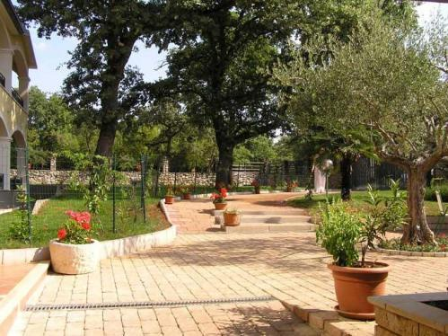 Bed and Breakfast Kolo Adults only, Novigrad