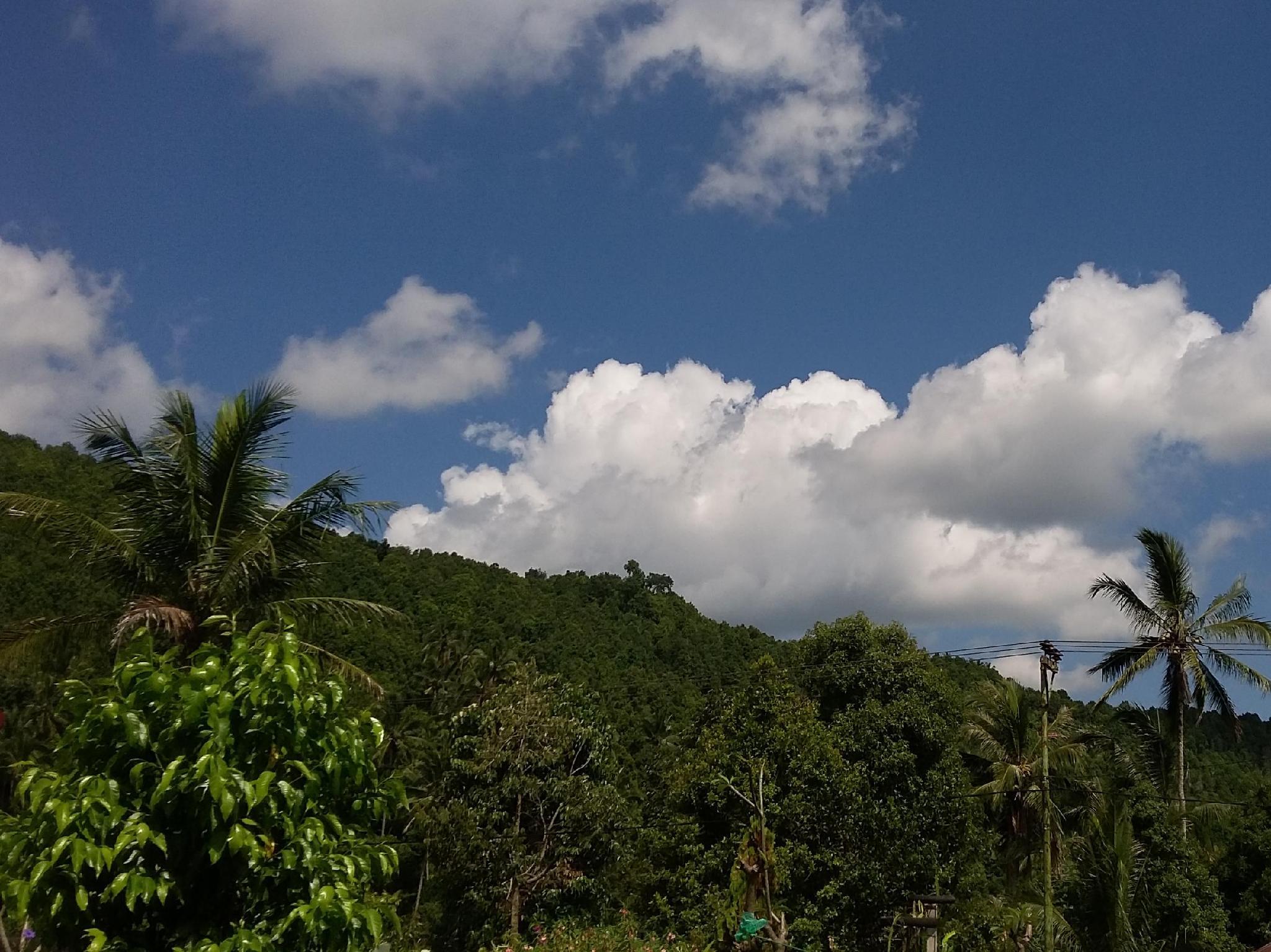 Gosela Homestay, Buleleng