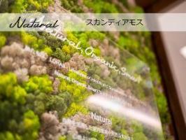 スーパーホテル上越妙高駅西口 天然温泉 関山の湯