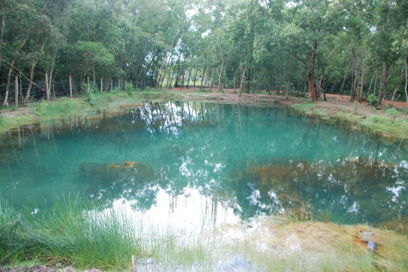 Liên Thọ Village Resort