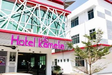 Гостиница Камелия
