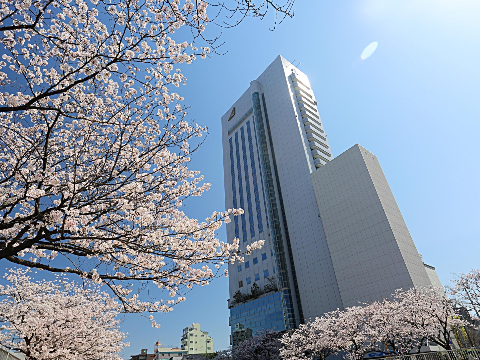 Hotel Nikko Kochi Asahi Royal, Kōchi