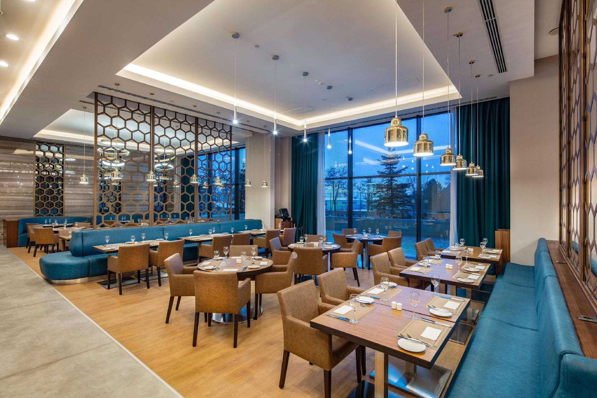 Hilton Garden Inn Sivas, Merkez