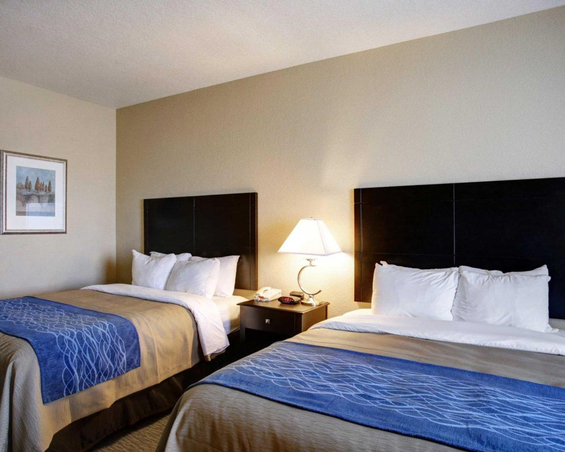 Comfort Inn & Suites Selma near Randolph AFB, Bexar