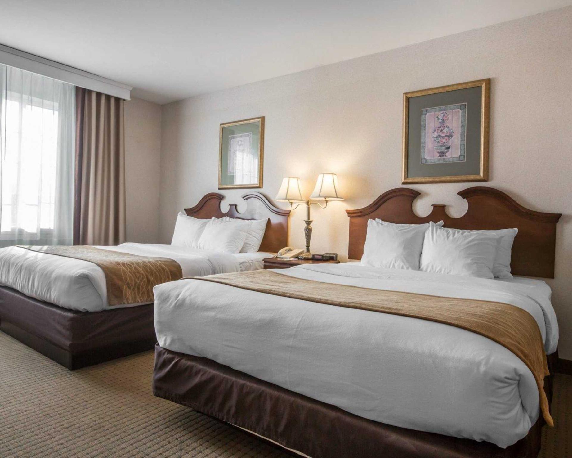 Comfort Inn & Suites East Greenbush - Albany, Rensselaer