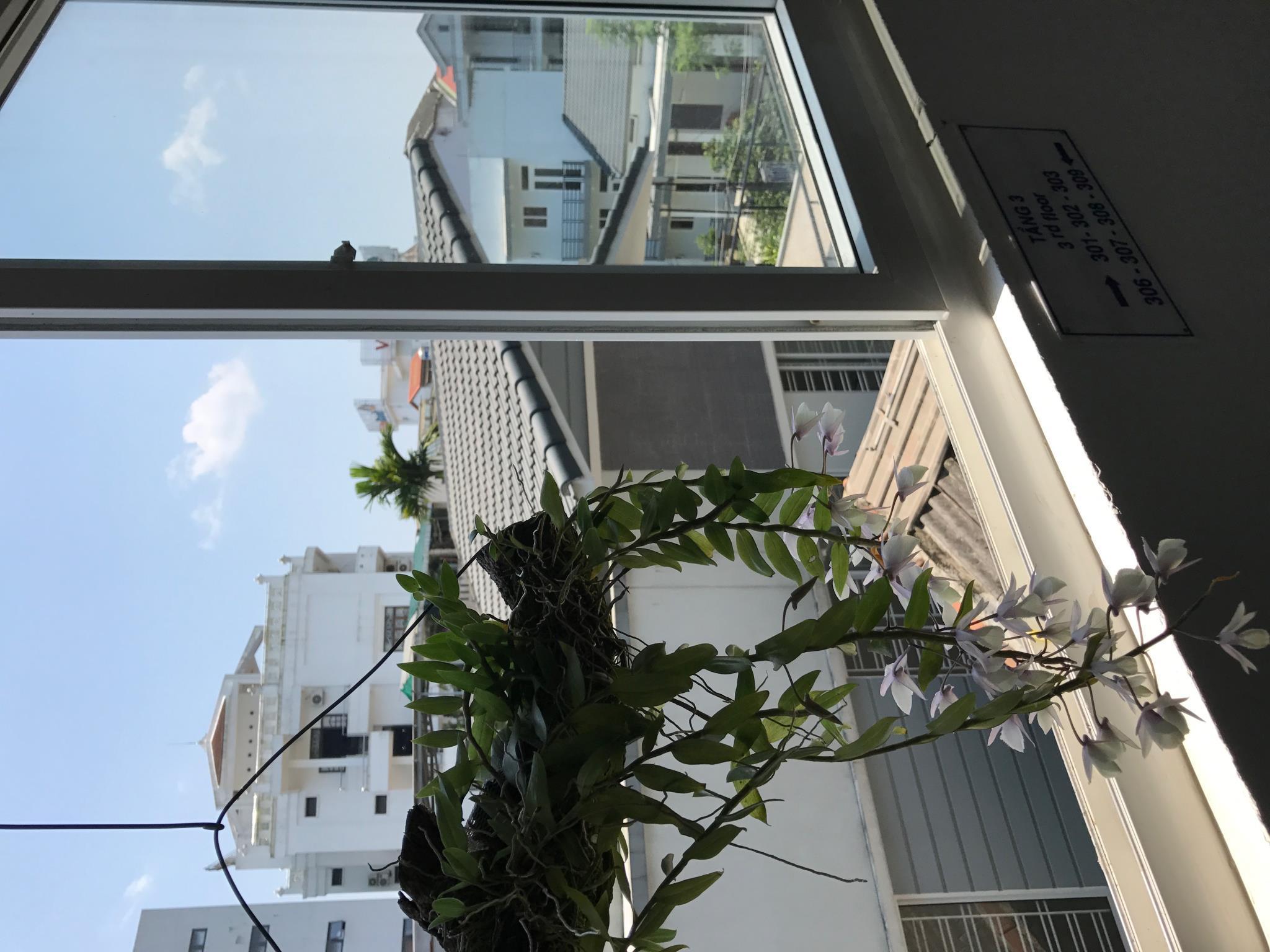 Sunny A Hotel, Huế
