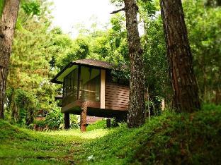 伊甸自然公園和度假村