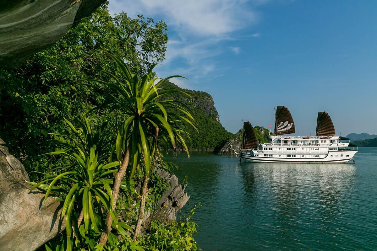 Bhaya Halong Cruise, Hạ Long