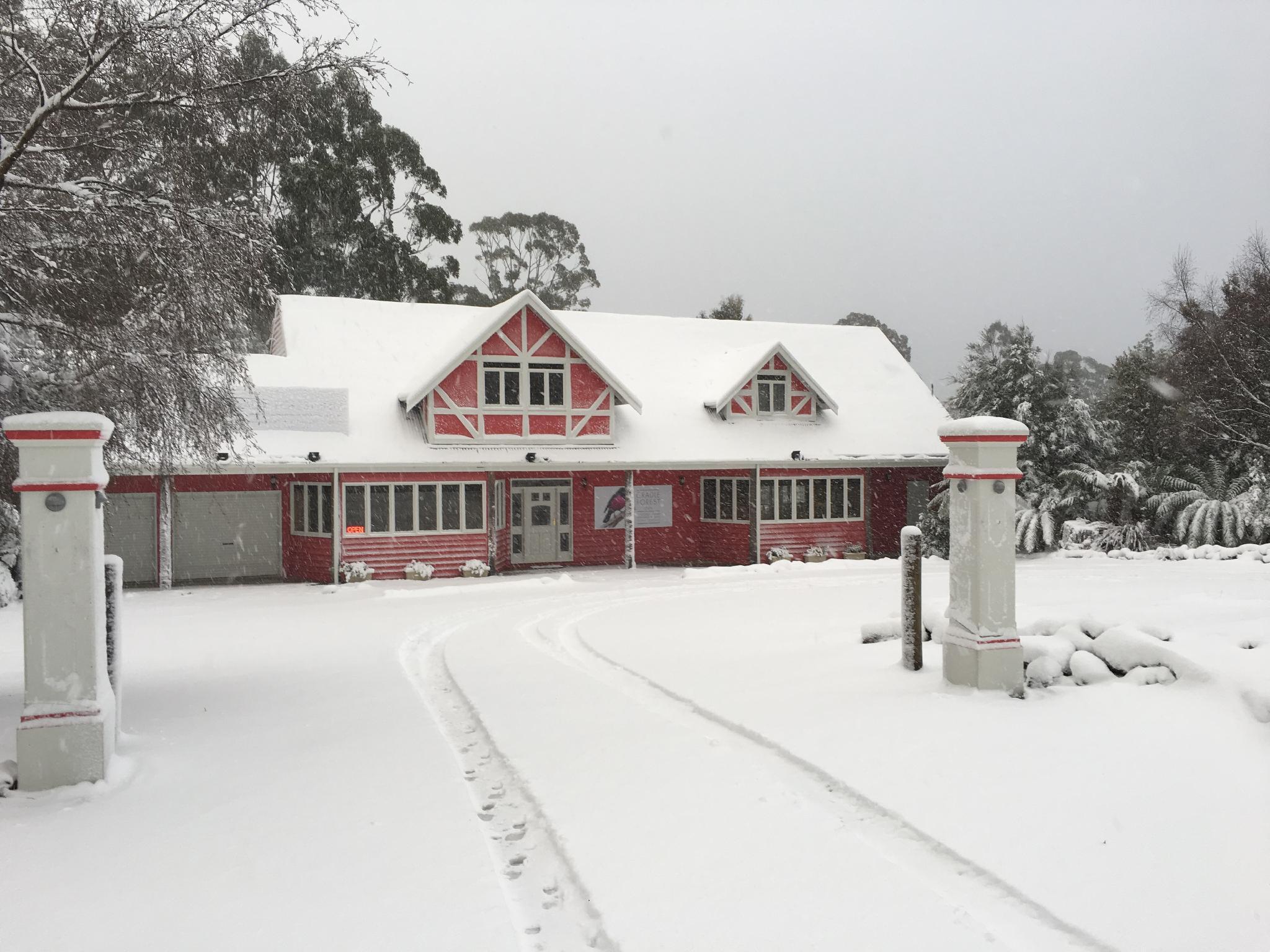 Cradle Forest Inn,Tasmania