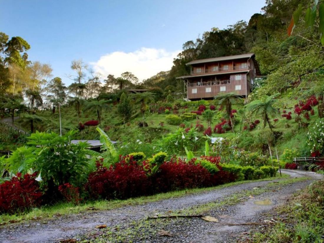 Book kinabalu mountain lodge kinabalu national park for Alpine lodge