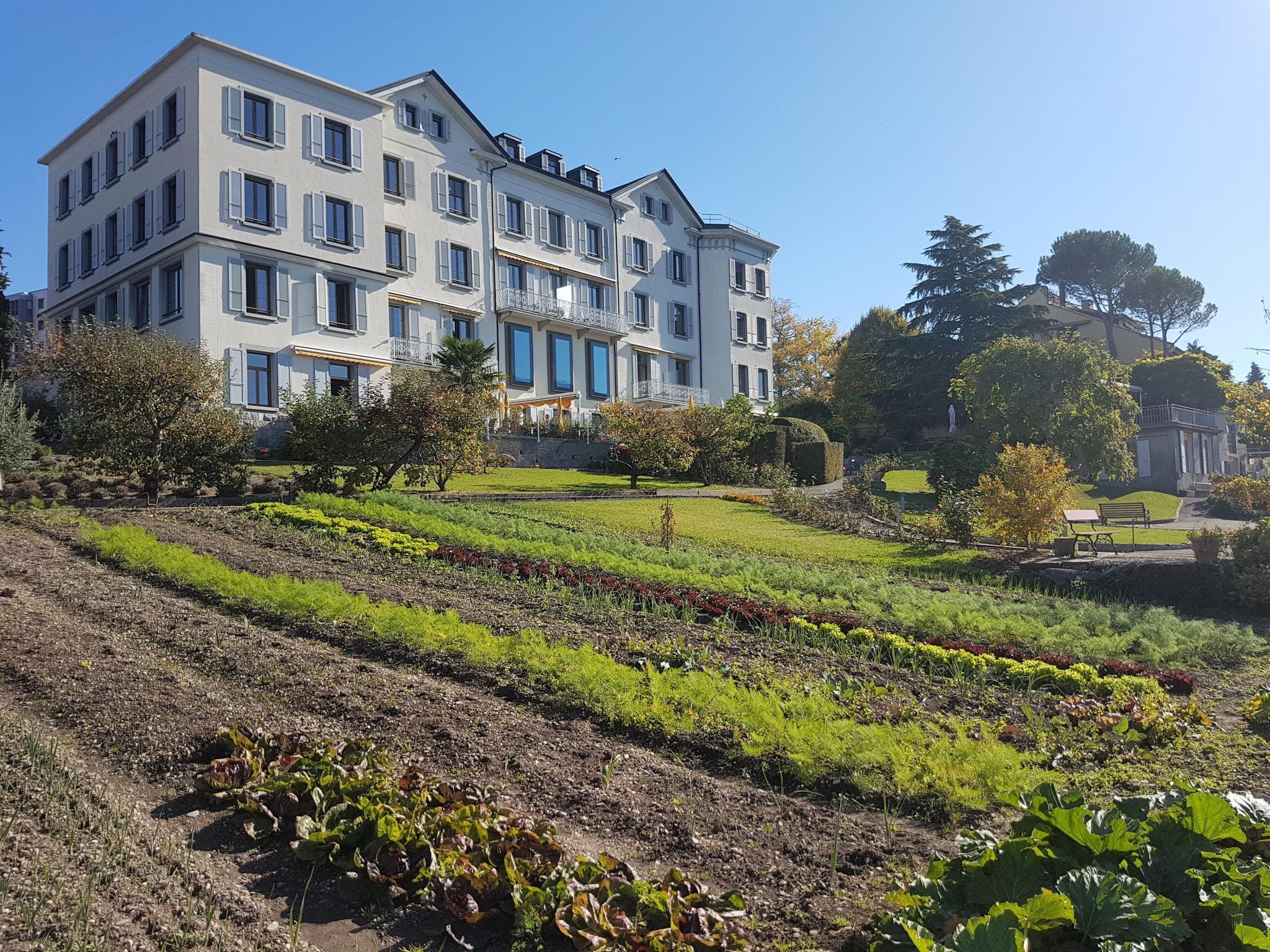 Hotel Bon Rivage - Restaurant L'Olivier, Pays-d'Enhaut