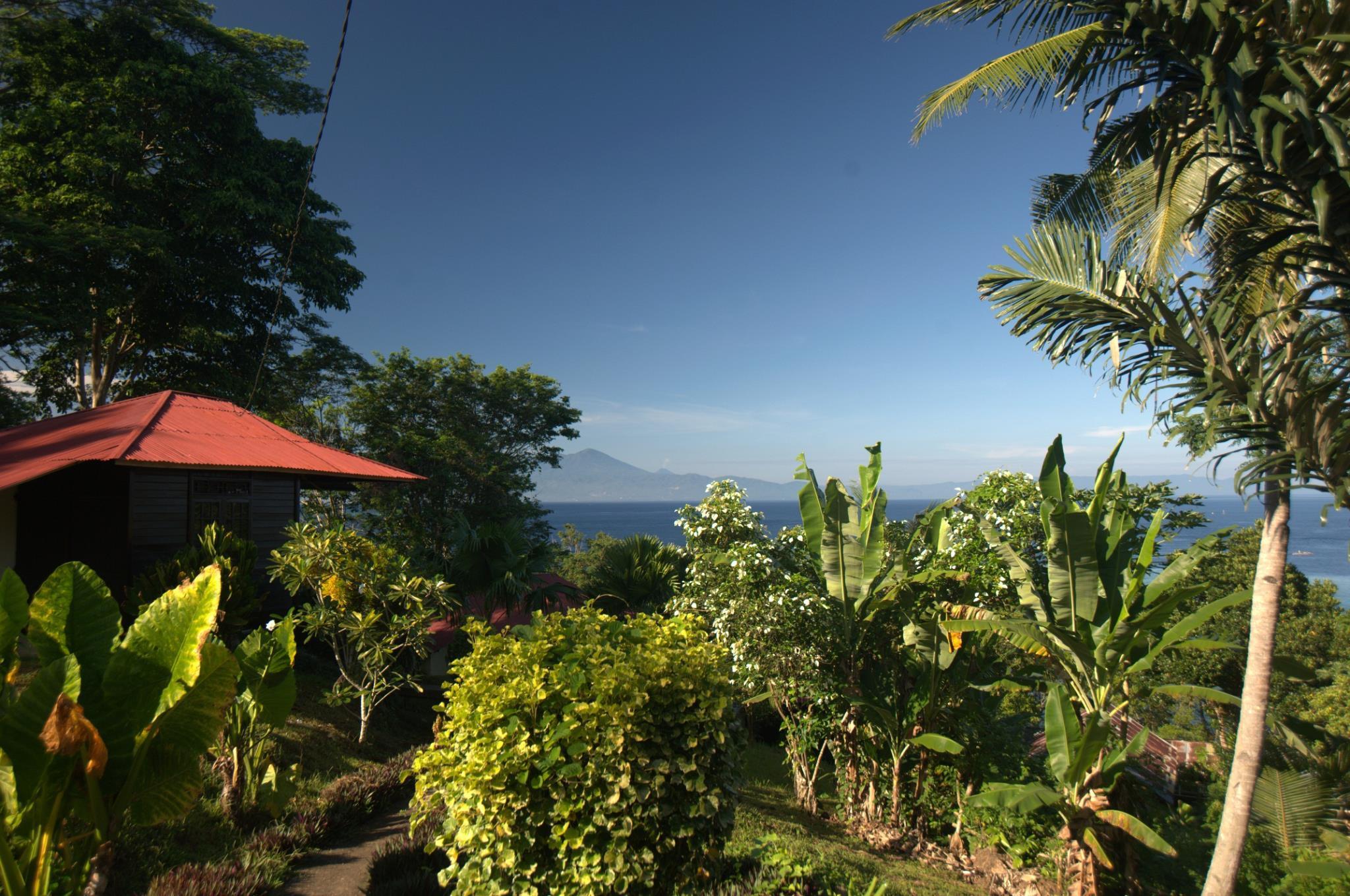 Happy Gecko Dive Resort, Minahasa Utara
