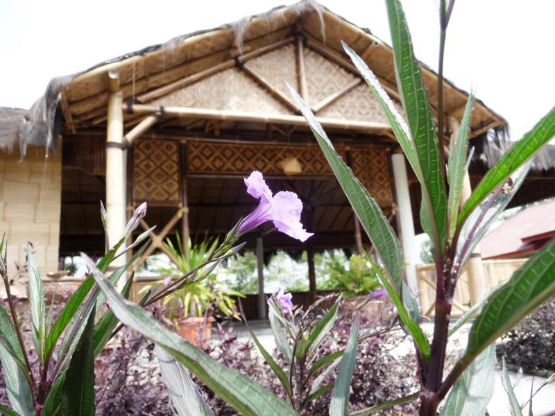 Pondok Bamboo Sendangsari, Wonosobo
