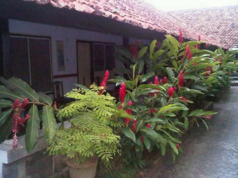 Hotel Wisata Lombok, Mataram