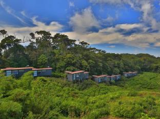 The Rainforest Ecolodge