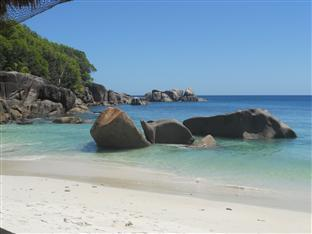Bougainvillea,