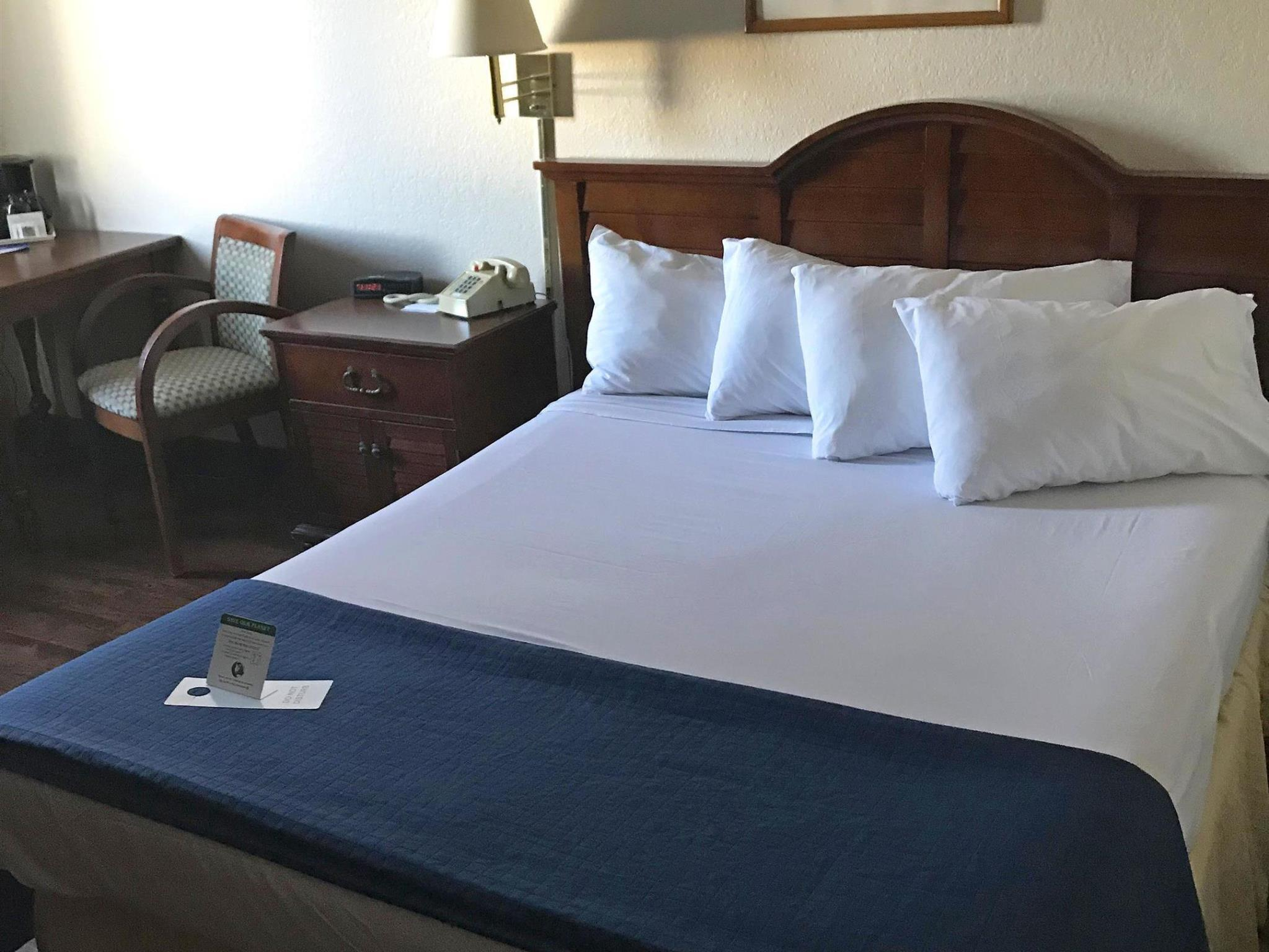 Pet Friendly Room with 1 Queen Bed - No Smoking