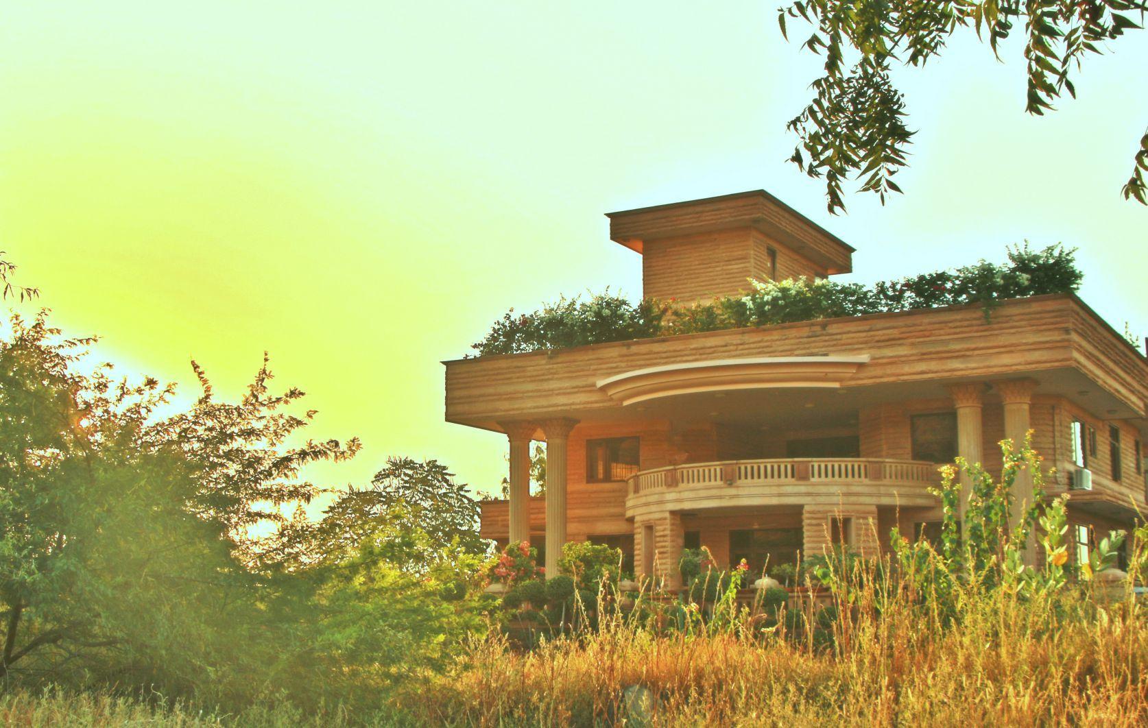 The Almond Tree, Jodhpur