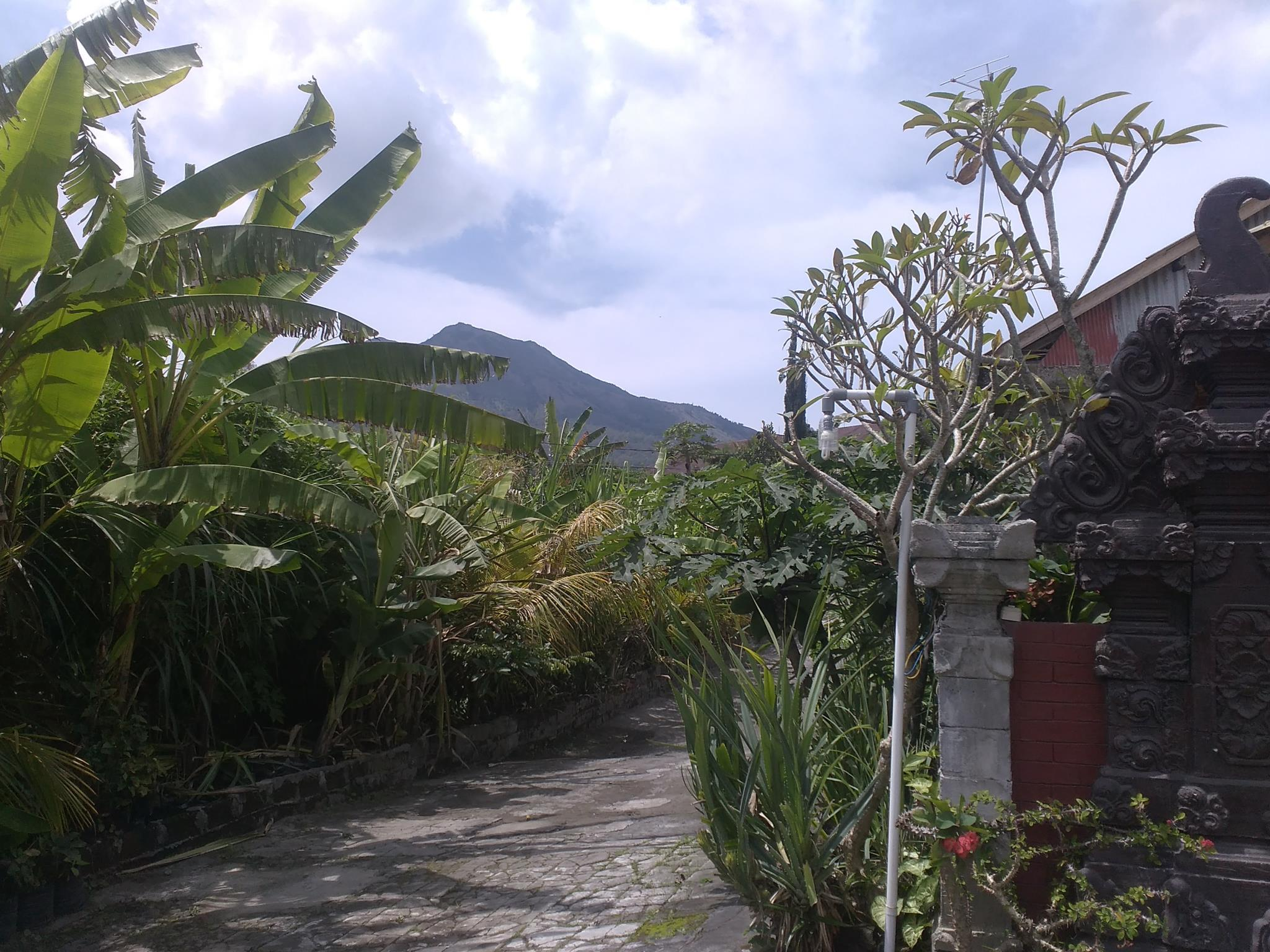 Volcano 2 guesthouse, Bangli