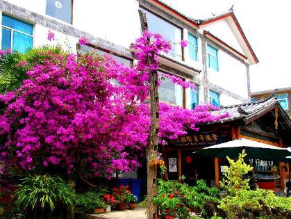 Lijiang International Youth Hostel