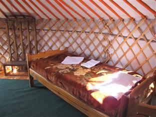 Steppe Nomads Resort, Bayandelger