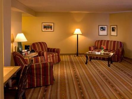 Junior Suite with King Bed - Free Internet In Room - Free Parking