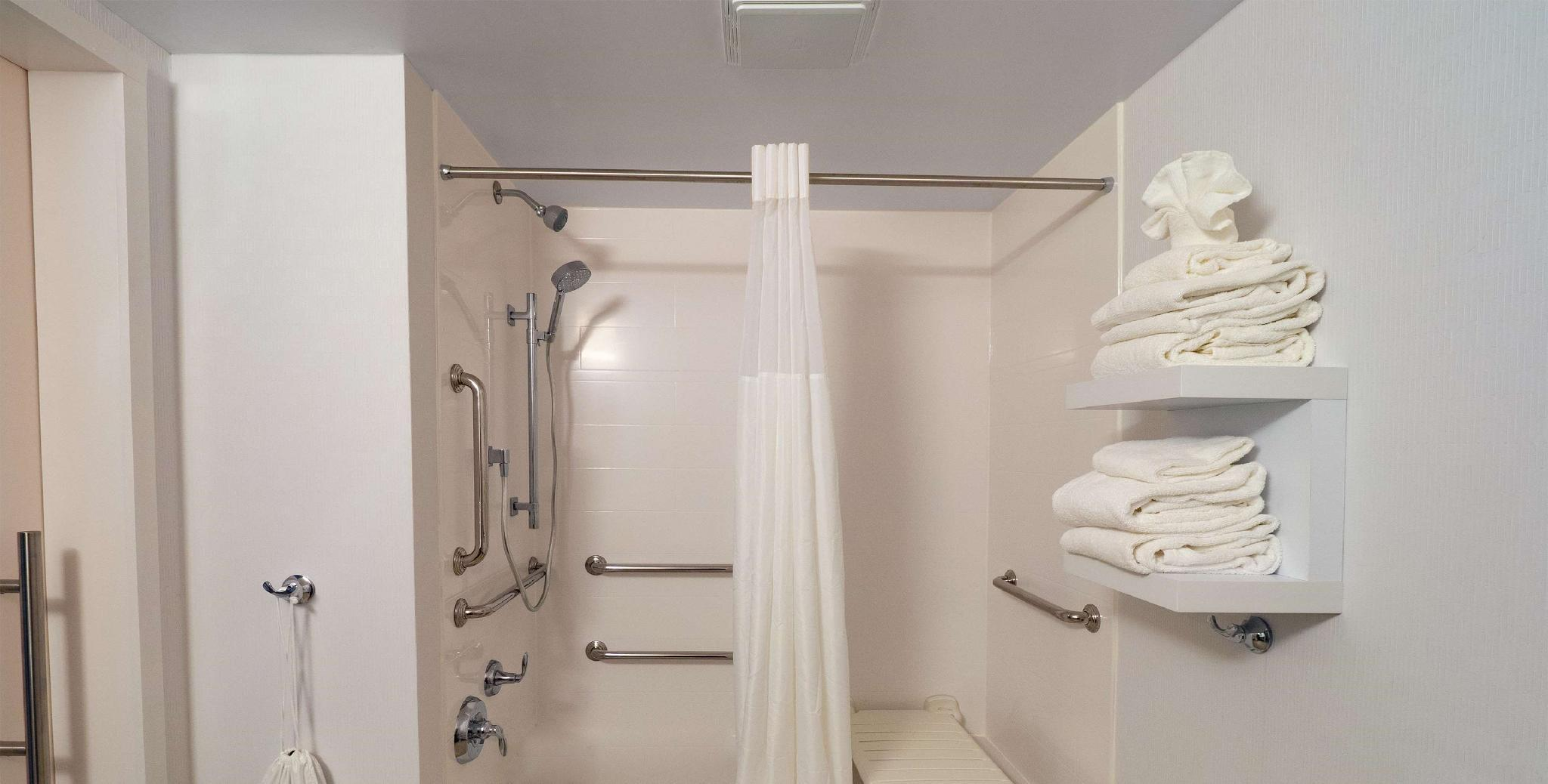 1 King Accessible Roll In Shower Non Smoking