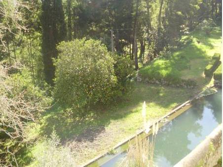 Bica Boa, Monchique