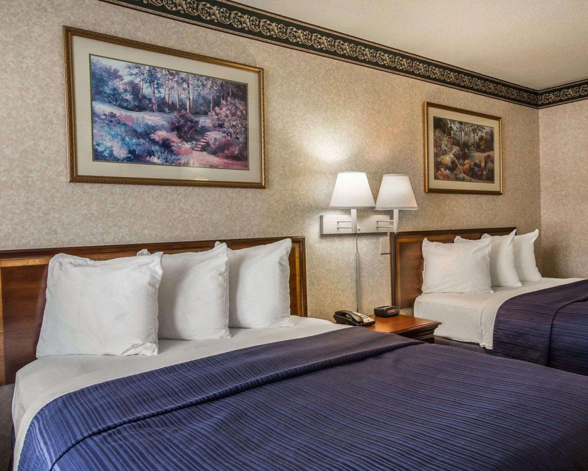 Econo Lodge Inn and Suites, Surry